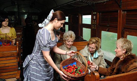 Disfruta del Tren de la Fresa viajando en AVE a Madrid